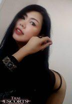 Sexy A-Level Escort Nymph Will Ride You Hard Bangkok