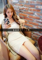 Excellence Beautiful Escort Model Amazing Time Seoul